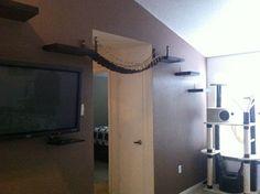 If I was a cat I would LOVE this!  Cat bridge.. indiana jones cat bridge by CatastrophiCreations, $150.00