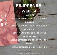 Week 4 - FILIPPENSE - VREUGDE IN OM TE GEE - Leesplan Om