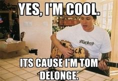 Whoever made this, thank you. This is my new response to everything. It's blink-182 thing!