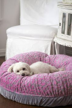 Vineyard Snuggle Luxury Dog Bed by Eloise Chihuahua, Maltese Dogs, I Love Dogs, Cute Dogs, Dog House Bed, Diy Dog Bed, Dog Furniture, Pet Beds, Little Dogs