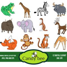 animals-digital-clipart-cover