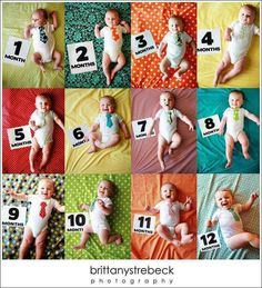 Monthly Photos of the First Year! Monthly Baby Photos, Monthly Pictures, Baby Pictures, Cute Babies, Baby Kids, Baby Boy, Bebe Love, Foto Baby, Baby Memories