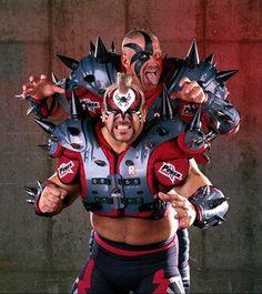 Wrestling Superstars, Wrestling Wwe, The Road Warriors, Wwe Photos, Professional Wrestling, Superhero, Classic, Face, Animals