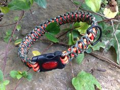 Paracord dog collar // custom // paracord 550 // great for hunting