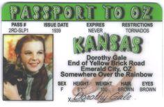 Wizard Wizard of Oz - Dorothy Fun Fake ID License Signs 4 Fun http://www.amazon.com/dp/B00FUKS3PE/ref=cm_sw_r_pi_dp_cixTvb1XW9JAQ