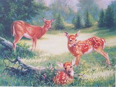 Embellished cross stitch kit, Summer meadow with deer, Linda Picken for Candamar Designs by KindredClassics on Etsy Straight Stitch, Satin Stitch, Stitch Kit, Upcycled Vintage, Floral Fabric, Art Forms, Autumn Leaves, Giraffe, Deer