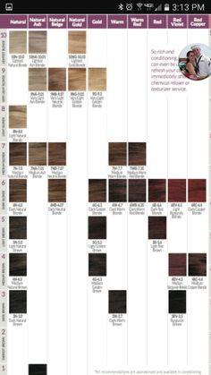Ion Brilliance Demi Permanemt Color Chart