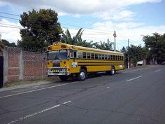 CAM01484[1] Malta Bus, School Buses, View Image, Autos