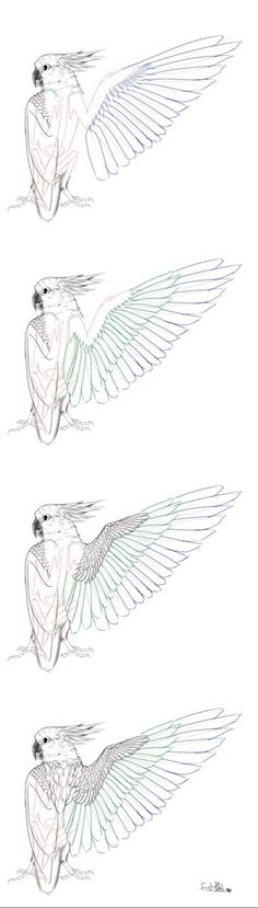 New Bird Artwork Design Reference Ideas Bird Artwork, Artwork Design, Drawing Skills, Drawing Techniques, Bird Wings, Wings Diy, Wings Design, Bird Design, Character Drawing