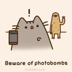 beware of photobombs // pusheen