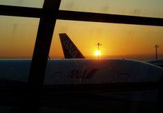 Gate 58 に駐機するANA機材からの日の出(羽田空港第2ターミナル) ANA ship & sun rise at Gate 58, Haneda Airport T2
