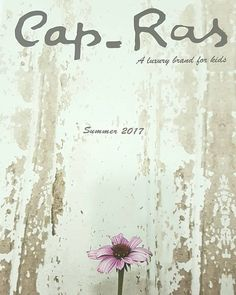CAP-RAS SS 2017