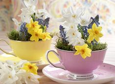 10 Easy Easter Table Decorations You Can Make In 5 Mins Or Less Brunch Table Setting, Easter Table Settings, Easter Table Decorations, Decoration Table, Easter Centerpiece, Easter Decor, Easter Ideas, Easter Wedding Ideas, White Pumpkin Centerpieces
