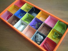 Outdoor colour walk - colour in the holes in an old chocolate box & find something that matches each colour