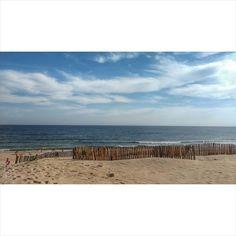 #landscape #summer #photography #playa Summer Photography, Vineyard, Landscape, Instagram Posts, Outdoor, Outdoors, Scenery, Vine Yard, Summer Pictures
