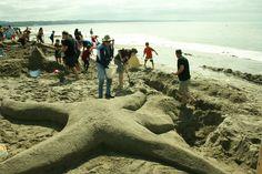 A Starfish of B-Movie perportion California Beach, Starfish, Ocean, Lifestyle, Movies, Santa Cruz, Films, The Ocean, Cinema