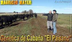 """Productores chilenos visitaron la cabaña """"El Paisano"""" de Mauricio Mayer Aberdeen, Mauritius, Bicycle Kick, News"""