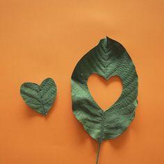 Doğanın her halini seviyoruz :)