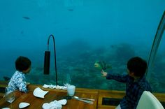 Eat in an Underwater Restaurant in the Maldives Called Ithaa