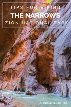 Tips for Hiking the Narrows [Zion National Park]