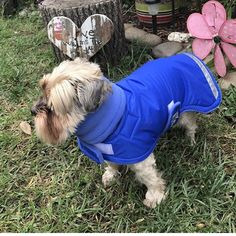 """16 Likes, 1 Comments - Made by De, Custom Dog Clothes (@coatsmadebyde) on Instagram: """"Sooooo cute! Baxter from @dogmama65 wearing his Made by De coat. It has a turtleneck so it's super…"""""""