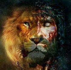 jesus the lion of judah Christ Tattoo, Jesus Tattoo, Jesus Wallpaper, Lion Wallpaper, Lion Pictures, Jesus Pictures, Christian Warrior, Christian Art, Jesus Art