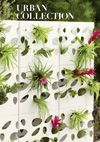 Cool garden wall-  VITEO - see you outside