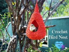 Some birds come into our house to see a place to build their nests. So I made this sweet home, sweet nest for birds using my crochet skill.