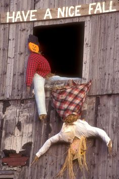 "fall decoration, display, decorations, autumn, """"Have a Nice Fall"""" A fall decoration of two scarecrows in a barn window (one is upside down falling out) in Danville in Caledonia County in the state of Vermont. Fall Humor, Late Summer Flowers, Holiday Pictures, Holiday Ideas, Fall Is Here, Happy Fall Y'all, Fall Signs, Fall Halloween, Halloween Goodies"