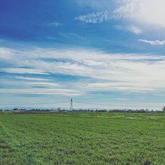 {cosa sai tu di quei cieli infiniti della pianura? di sguardi che si perdono fra i prati e la montagna? cosa sai dell'armonia di una primavera che riempie l'anima e spettina i capelli?} #igersreggioemilia #igersemiliaromagna #igersitalia #turismoer #turismore #buongiornore #bassareggiana #discoveringitaly #direzioneitalia #FiumePo #Poriver #Po #pianura #countrylife by sarasalvarani
