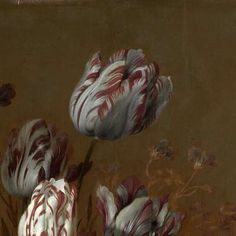 Floral Still Life, Hans Bollongier, 1639 - Stillevens en vogels -Collected Works of Geraldine Hildering - All Rijksstudio's - Rijksstudio - Rijksmuseum