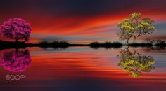 wonderful color by costelbcc Reflection, Nature Photography, Framed Prints, Fine Art, Water, Travel, Outdoor, Color, Sunsets