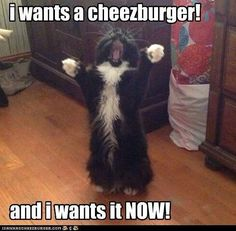 omg that is so me when i am hungry