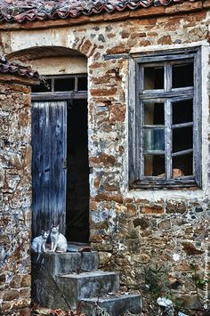 Abandoned houses in Greek villages r now perfect home for animals in Lemnos Island, Lesvos, North Aegean_ Greece Old Buildings, Abandoned Buildings, Abandoned Places, Greek Decor, Windows, Old Doors, Stone Houses, Gothic Architecture, Greek Islands