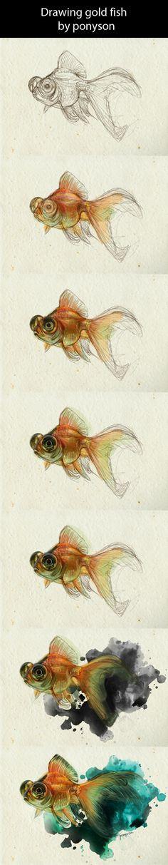 drawing goldfish by ponyson