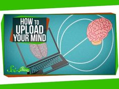 How to Upload Your Mind by scishow: Uploading your mind to a computer might one day let humans cheat death. The technology's a long way off, but researchers are working on closing that gap. This episode was brought to you and inspired by the movie Self/less. Hosted by: Hank Green Sources:IBM simulates 530 billion neurons, 100 trillion synapses on supercomputer 1014 The Connectome Debate: Is Mapping the Mind of a Worm Worth It? Connectome of the