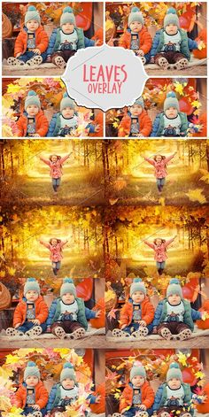 Best for autumn pictures. All files are in PNG format with transparent background. Photoshop Overlays, Falling Leaves, Layer Style, Fall Pictures, Png Format, Autumn Leaves, Layers, Art, Autumn Pictures