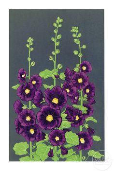 Image of Hollyhocks Beautiful Flower Drawings, Pencil Drawings Of Flowers, Beautiful Flowers, Watercolor Flowers, Watercolor Paintings, Hollyhocks Flowers, Rock Flowers, Guache, Linocut Prints