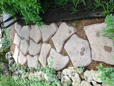 Fun stone walkway #diy