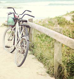 At the Santa Cruz Campus, students enjoy leisurely bike rides to campus and around local beaches.