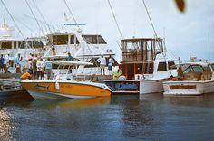 2014 Roatan Fishing Tournament. Photo by Daydream Photography http://instagram.com/daydreamphotography93