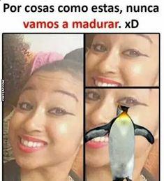 Click para ver la imagen o escribir un comentario... #bromasgraciosas
