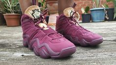 save off b6f0e b88e6 Adidas Crazy Eight Vino
