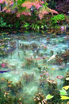 東京カメラ部 New:Michiya Fujita flowers in water Nature Aesthetic, Aesthetic Green, New Wall, Pretty Pictures, Wall Collage, Aesthetic Pictures, Aesthetic Wallpapers, Fairy Tales, Beautiful Places
