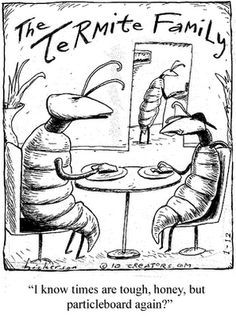 The Termite Family, just for a laugh Just For Fun, Just For Laughs, Termite Control, The Far Side, Comedy, Humor, Memes, Garden Quotes, Caricatures