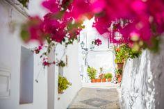 WASZA HISZPANIA: Andaluzja okiem Oli i Marcina | Time For Spain Table Decorations, Home Decor, Decoration Home, Room Decor, Home Interior Design, Dinner Table Decorations, Home Decoration, Interior Design