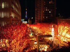 It's that time of year again. Here are the best of Tokyo's spectacular illuminations