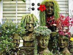 succulent heads! http://pinterest.net-pin.info/