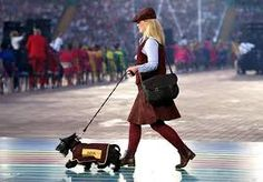 commonwealth games dogs.