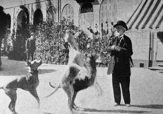 composersdoingnormalshit:  Giuseppe Verdi playing with three big dogs.